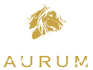 Aurum Real Estate Brokers LLC