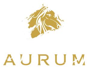 Aurum Real Estate Brokers LLC